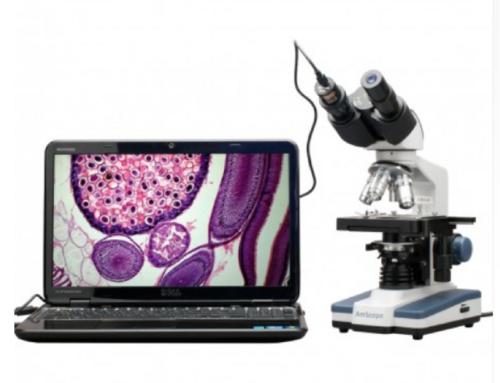 Microscopio AmScope AS B120B-E con cámara de 0.3 MP